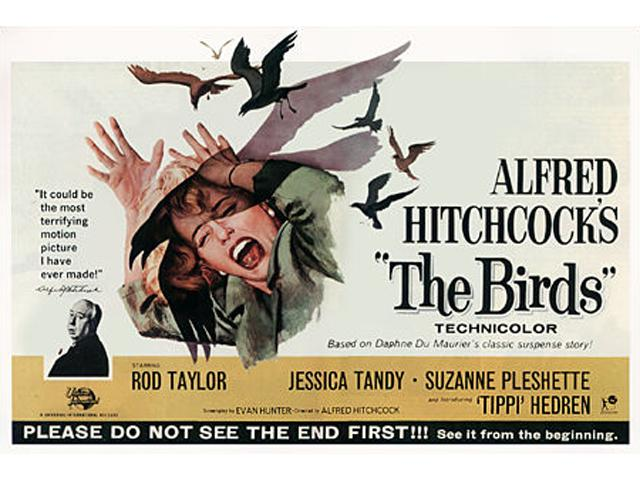The Birds<br />1963 wallpaper