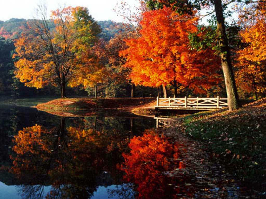 Fall along the Scioto River wallpaper