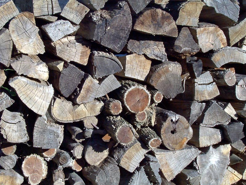Woodpile wallpaper