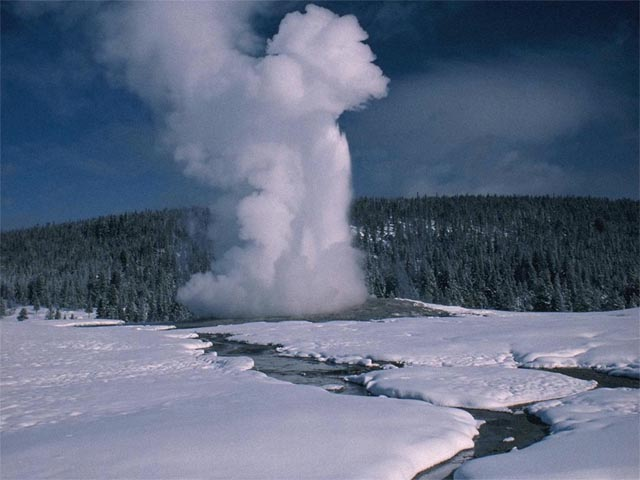 Old Faithful in Yellowstone wallpaper